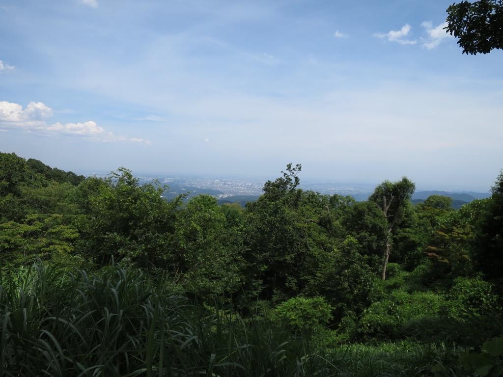 高尾山頂上からの眺望