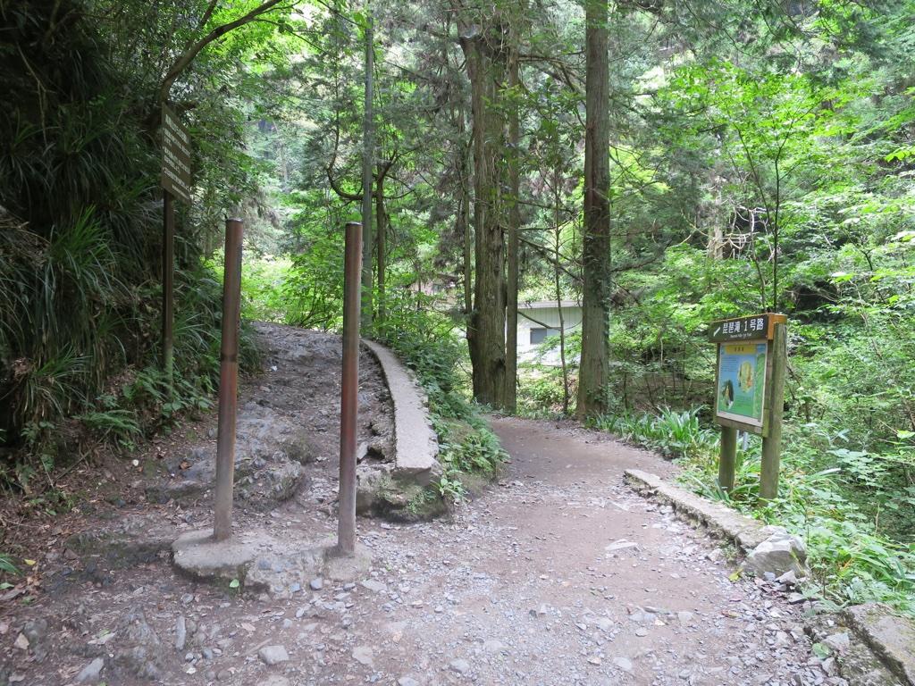 琵琶滝1号路分岐点