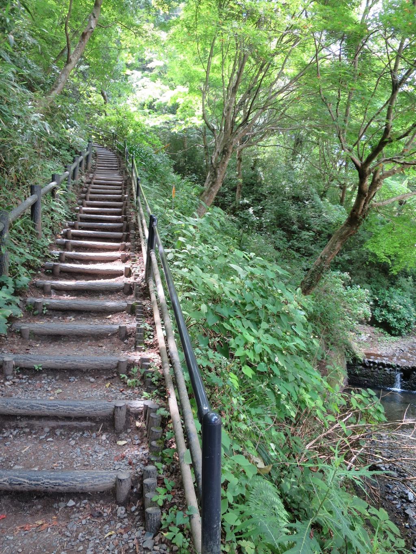 稲荷山コース直後の急な階段