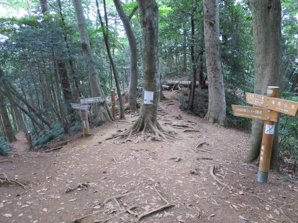 4号路といろはの森コースのクロスポイント