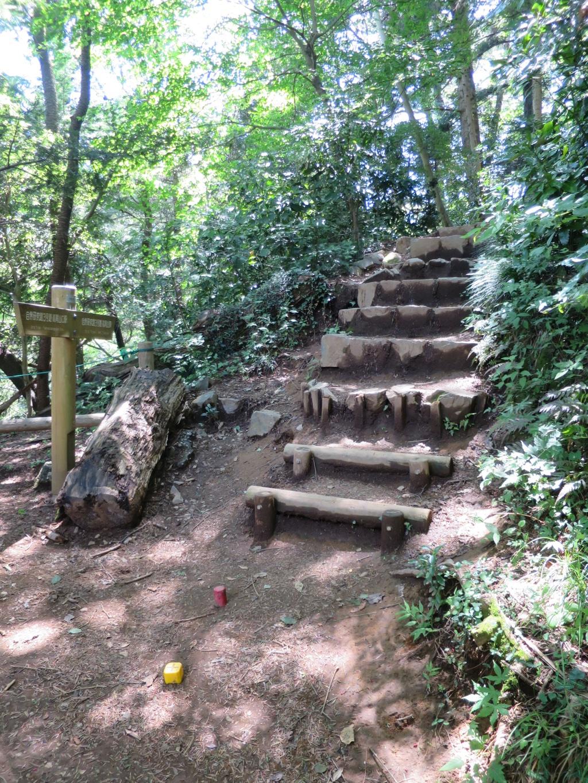 3号路の急な階段