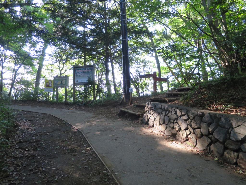 1号路途中のいろはの森コース降り口