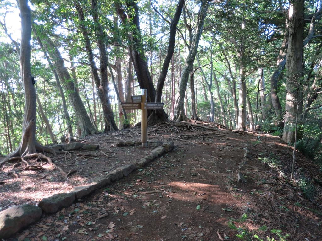 いろはの森コースと4号路の交差ポイント