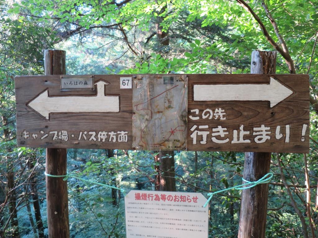 いろはの森コース分岐点